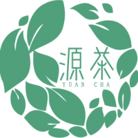 cropped-cropped-logo-green.png